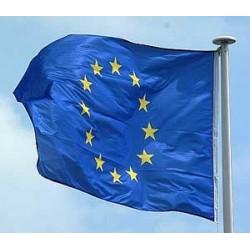 Flaga unieuropejskiej